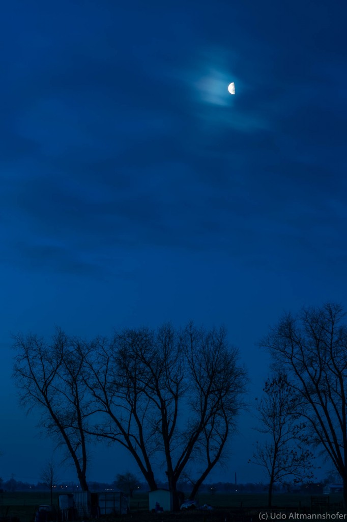 Blaue Stunde mit Mond